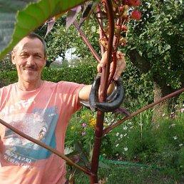 Сергей, Милославское, 65 лет
