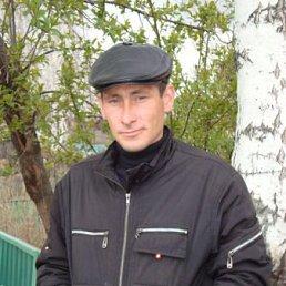 Владимир, 38 лет, Ельцовка