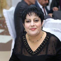 Nazik, , Ереван