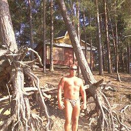Игорь, 57 лет, Тверь - фото 1