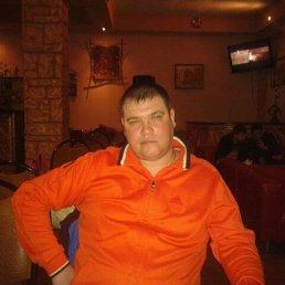 СЕРЁГА, 40 лет, Удельная