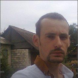 Андрй, 33 года, Броды