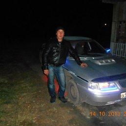 Вася, 41 год, Ирбит