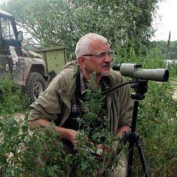 Vadim Avdanin, 63 года, Москва