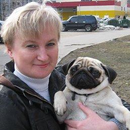 Наташа, 43 года, Бежецк