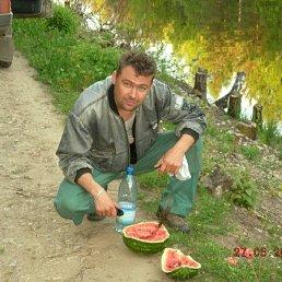 юрий, 46 лет, Иваново