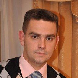 Антон, 35 лет, Иваново