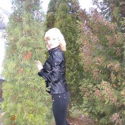 Анна, 29 лет, Ахтырка