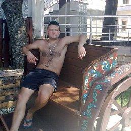 Кирилл, 32 года, Краснодар - фото 5