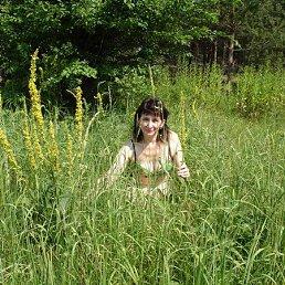 Эльвира, 53 года, Ногинск