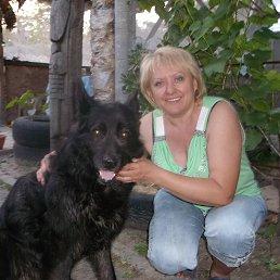 Zara, , Полтава