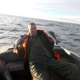 Николай, 51 год, Гдов