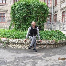 МИШКА, 60 лет, Ждановка