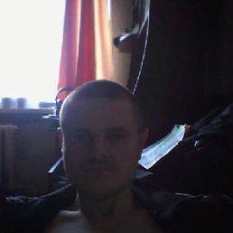 Вова, 28 лет, Томилино