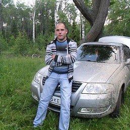 сергей, 32 года, Александров