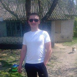 Вадим, 31 год, Любомль