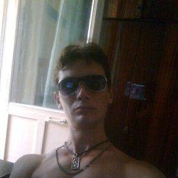 Артур, 29 лет, Крым