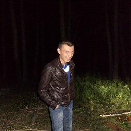 Александр, 28 лет, Приютово