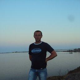 серега, 43 года, Емильчино
