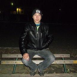 Александр, 25 лет, Щучье