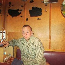 Дмитрий, 28 лет, Пестово