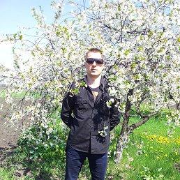 Дмитрий, 40 лет, Новогродовка