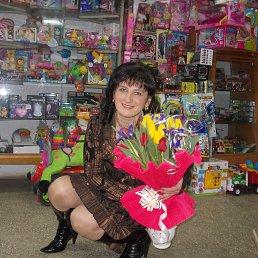 Мурочка, 41 год, Борислав