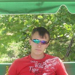 Илья, 34 года, Столбовая