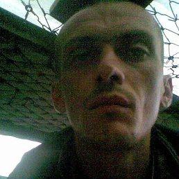 Павел, 40 лет, Кременец