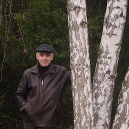 lui_59, 61 год, Миргород