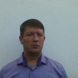 РОМАН, 41 год, Красная Поляна
