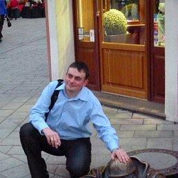 аркадий, 36 лет, Волгоград