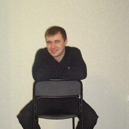 Николай, 38 лет, Пестрецы