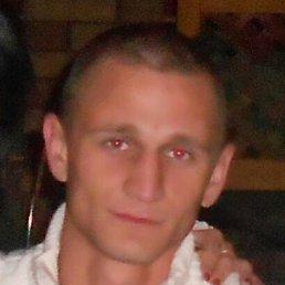 Алексей, 31 год, Тростянец
