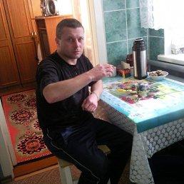 Николай, 45 лет, Белинский