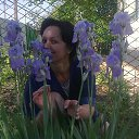 Фото Анжелика, Тарасовский, 53 года - добавлено 13 января 2014