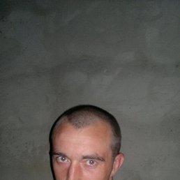 Александр, 36 лет, Грязи