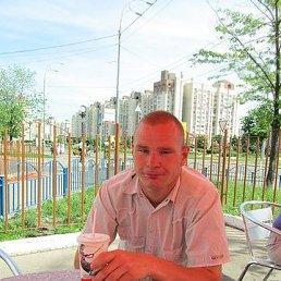 Юра, 35 лет, Бородянка