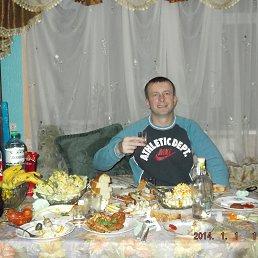 Алексей, 39 лет, Иршава