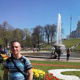 Николай, 29 лет, Троицк