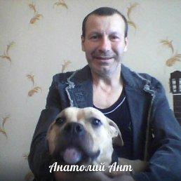 Анатолий, 61 год, Малин