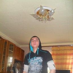 ярослав, 24 года, Богородицк