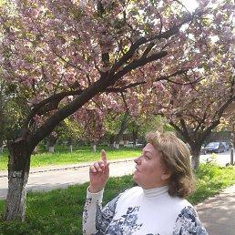 Раиса, 64 года, Ужгород