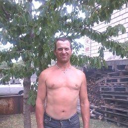 Сергій, 53 года, Балта