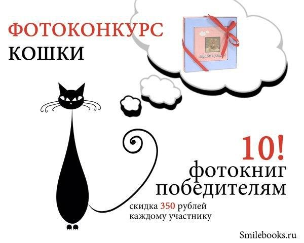конкурсы фотографий кошек школьная распалась