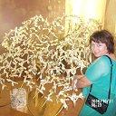 Фото Ольга, Максатиха, 47 лет - добавлено 2 сентября 2014