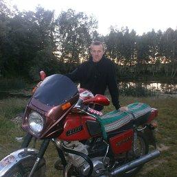 Игорь, Мена, 29 лет