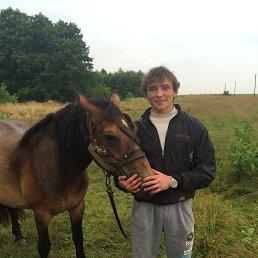Алексей, 29 лет, Новоград-Волынский