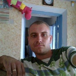 Николай, 36 лет, Васильевка