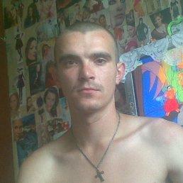 zorin, 27 лет, Нетишин